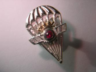 pin profesiones paracaidista oro plata